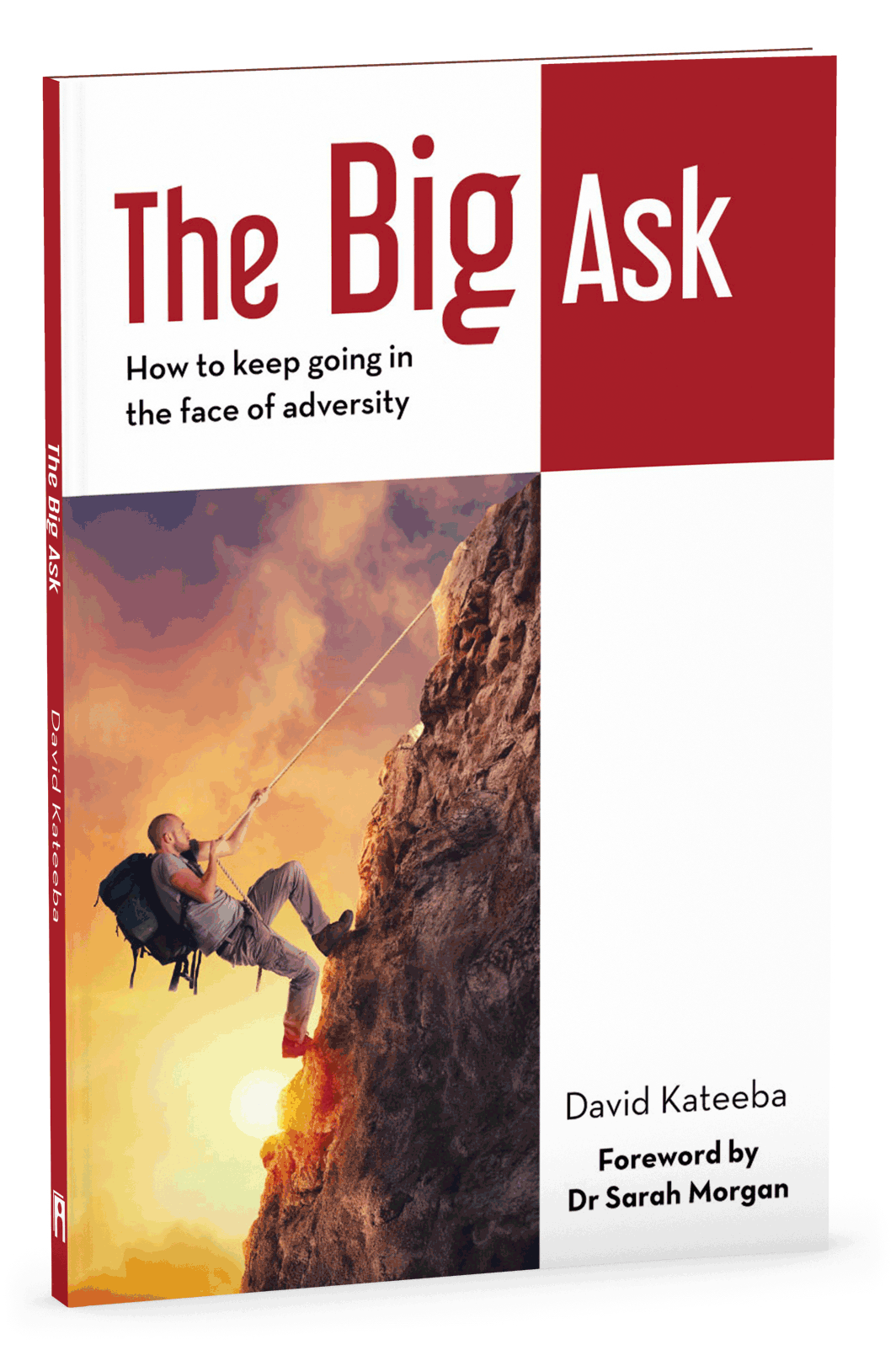 The Big Ask 3D Cover